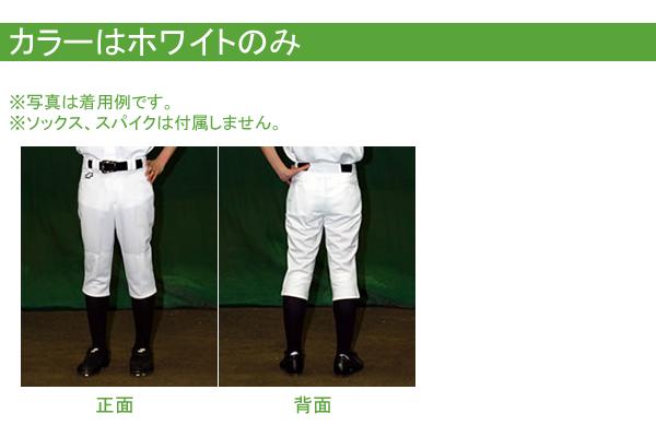 SSK社製ホワイトパンツ カラー