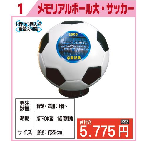 メモリアルボール大・サッカー