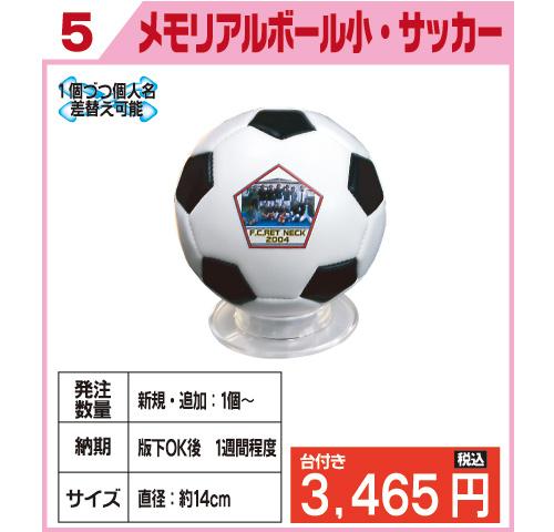 メモリアルボール小・サッカー